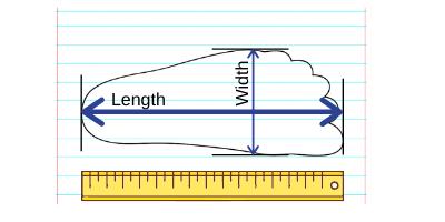 foot-measurement.png